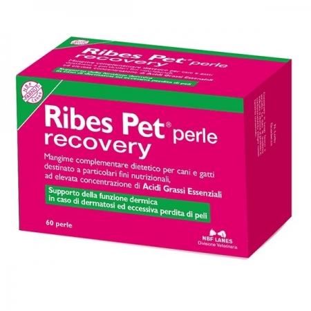 RIBES PET PERLE RECOVERY Cani