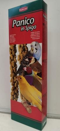 PANICO IN SPIGA Uccelli