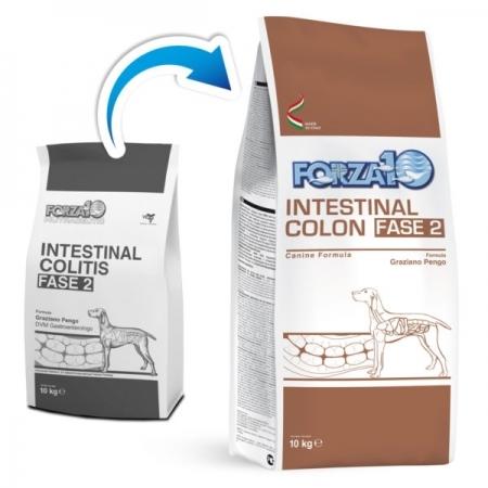 ACTIVE INTESTINAL COLON FASE 2 Cani