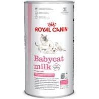 ROYAL CANIN BABYCAT MILK Gatti