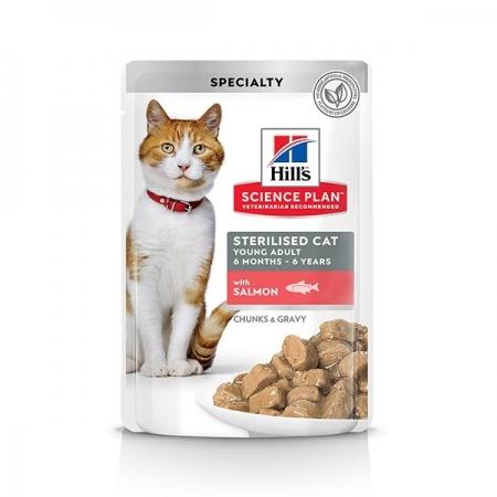 SCIENCE PLAN YOUNG ADULT STERILISED CAT CON SALMONE Gatti