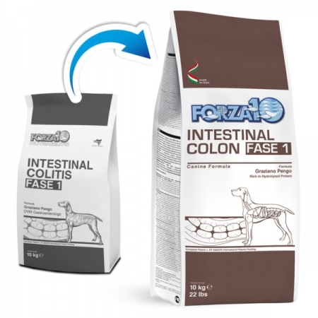 ACTIVE INTESTINAL COLON FASE 1 Cani
