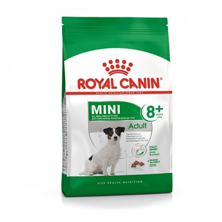 MINI ADULT 8 + Cani