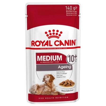 MEDIUM AGEING 10+ Cani