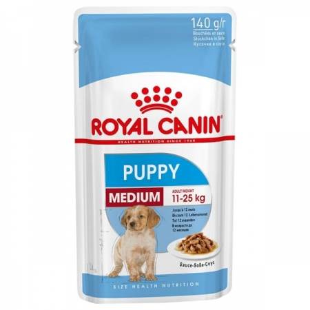 MEDIUM PUPPY Cani