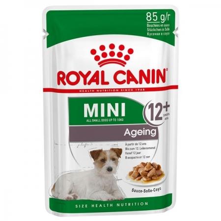 MINI AGEING 12+ Cani