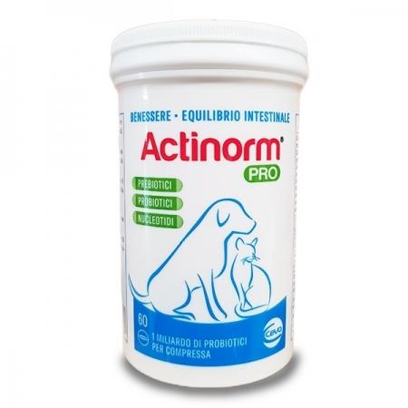 ACTINORM PRO Gatti